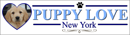 Puppy Love New York web logo